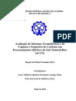 Sistemas Termeletricos e de Captura e Sequestro de Carbono Em Processamento Offshore de Gn