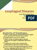 Esophageal Diseases (1)