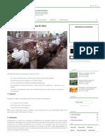 Investir Dans La Cuniculture Ou Élevage Des Lapins - Agriculture Au Cameroun