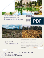 Problema de la tala indiscriminada de árboles