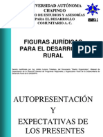 Figuras_Juridicas