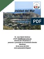 seminario Puerto Angel