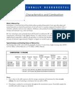 Natural Gas Characteristics & Combustion