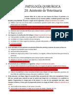 PARCIAL PATOLOGÍA QUIRURGICA. FICDE 2020.