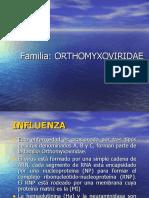 influenza 2010