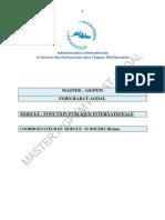 Fonction Publique Internationale-converti