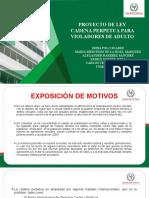 Diapositiva Proyecto de Ley