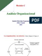 Analisis_organisacional_presentacion__2010_HP_