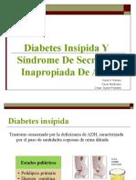 diabetes insipida y SIADH
