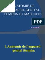 3) Appareils génitaux