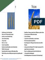 Weizen - Wild und Kulturpflanze