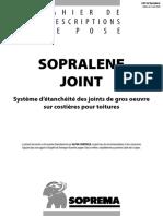 CPP + ETN SOPRALENE JOINT