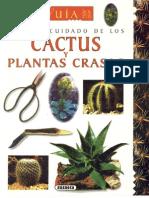Guia Para El Cuidado de Cactus y Plantas Crasas