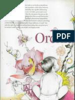 Orchid Children