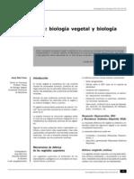 fitoestrógenos