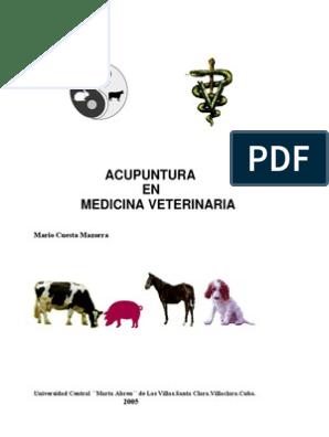 Prostatitis bacteriana en la cresta del perro.