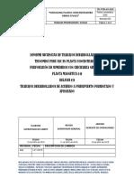 INFORME TRABAJOS OBRAS CIVILES PLANTA MAGNETICA Y RELAVES - PARADA
