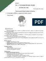 CLASA X sc. prof. - MODUL 2 TUNSORI PENTRU FEMEI