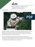 _tech_stiinta_albine-dresate-depisteze-infectiile-covid-19-functioneaza-tehnica-adulmecarii-insecte-1_60942a035163ec4271c42c14_index