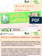 B_rigada_Ambiental[1]
