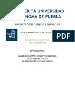 P5- ESPIROMETRÍA