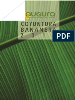 CONYUNTURA-BANANERA-2015