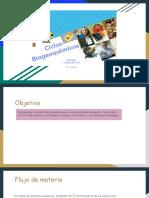 Ciclos Biogeoquímicos II° medio (clase 2 y 3)