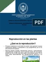 Reproducción en Plantas-2021