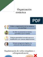 Organización Sintáctica y Pragamática