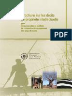 Brochure Sur Les Droits de PI