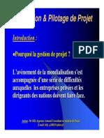 Réalisation et Pilotage de projet