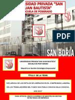 Sustentación Mario Pedro Bendrell Alzamora