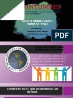 Terrones Silva y otros vs. Perú