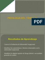 02- Patología Del Trabajo (2)