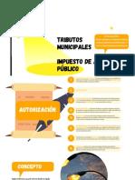 Tributos Municipales Impuesto de Alumbrado Público