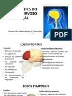 Aula 03 -Componentes Do Sistema Nervoso Central