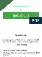 Final Presentation on India Bulls