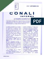 conali_88