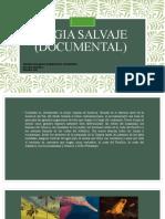 Magia Salvaje (documental)
