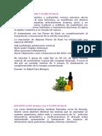 ARTRITIS REUMATOIDE Y FLORES DE BACH