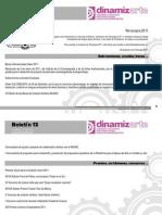 Boletín Dinamizarte 13