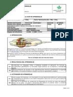 F08-9543-002 Guías de Aprendizaje_V3-65717