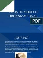 TIPOS DE MODELO ORGANIZACIONAL EQUIPO 2