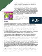 Notas - Resignificando (Bandler e Grinder, Ed. por Connirae Andreas e Steve Andreas)