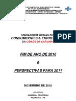 Pesquisa Fecomércio Sondagem de Opinião Caruaru - fim de ano 2010