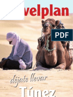 Guía+Túnez+2009