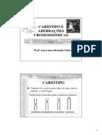 Cariótipo e aberrações cromossômicas