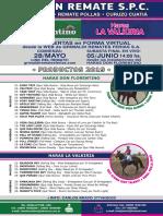 Catalogo La Valkiria Hdf
