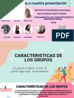 Caracteristicas de Los Grupos (1)