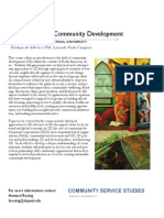 CSS 390 Introduction to Community Development - Flyer